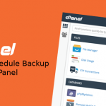 Setting Schedule Backup VPS cPanel