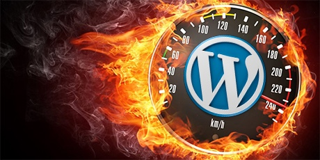 WordPress Hosting Gratis 1 bulan